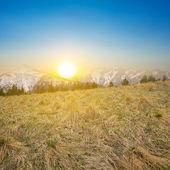 Grass mountain slope — Stock Photo