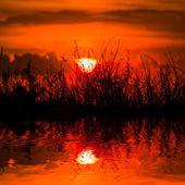 Bir suya yansıyan kırmızı dramatik günbatımı — Stok fotoğraf