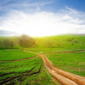 Crossroads among a green fields — Stock Photo