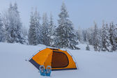 Orange touristic tent in a winter forest — Stok fotoğraf