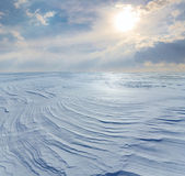Winter fields — Stock Photo
