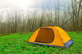 Touristic camp in a green forest — Stock Photo
