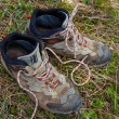 Foto Stock: Closeup touristic boots on grass