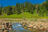 Mountain river scene — Stock Photo