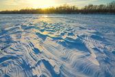 Sunset over a winter plain — Stock Photo