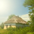 Rural house in a village — Stock Photo #41151523