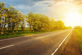 Asphalt road at the sunset — Foto Stock