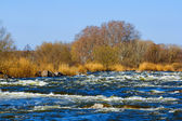 Rushing spring river — Stock Photo