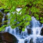 Closeup waterfall — Stock Photo #46285591