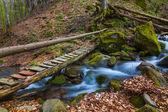 Berg fluss szene — Stockfoto