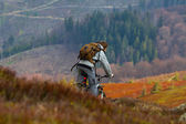 Bicycle rider in a mountain slope — Stock Photo