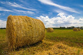 Haystack wheat field — Stock Photo