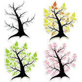 Four of the tree. Seasons. — Stock Vector
