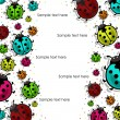 Beautiful, colorful ladybugs — Stock vektor