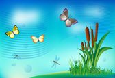Summer background with grass butterflies and dragonflies — Stock Vector