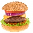 Cheeseburger on isolated — Stock Photo #12330417
