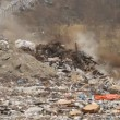 Stock Video: Garbage dump