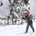 Skier in winter — Stock Photo #18295509