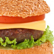 Cheeseburger isolated — Stock Photo #23362430