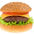 Cheeseburger isolated — Stock Photo #23669889