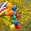 Colorful balls — Stock Photo #25300783