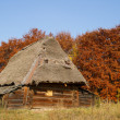Old house with a thatched roof — Stock Photo