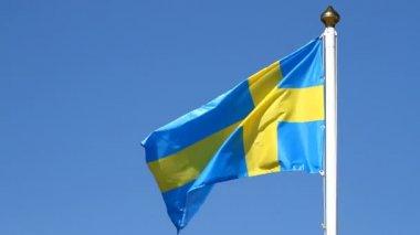 Vlajka švédština — Stock video
