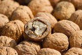 Walnuts fruit — Stock Photo