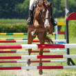 Horse jump a hurdle — Stock Photo