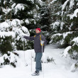 Stock Photo: Man cross-country skiing