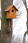 Beautiful wooden birdhouse — Stock Photo