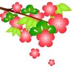Sho Chiku Bai — Stock Vector #13154469