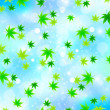 Maple sky background - 图库矢量图片