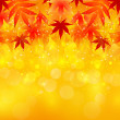 Stock Vector: Maple autumn leaves background autumn