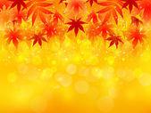 Maple autumn leaves background autumn — Stock Vector