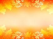 枫叶秋天的树叶背景 — 图库矢量图片