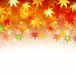 Maple autumn background — Stock Vector #27197705