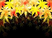 Jesień klon liście tło — Wektor stockowy