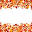 Stock Vector: Maple autumn leaves background
