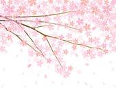 вишневый фон — Cтоковый вектор