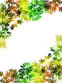 Plant leaf background — Stock Vector