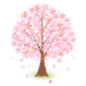 Trees of cherry blossoms — Stock Vector