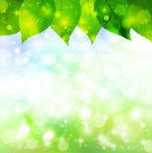 Paisaje de cielo de hoja — Vector de stock