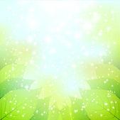 Leaf sky landscape — ストックベクタ