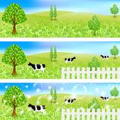 Cattle ranch landscape — Stockvektor