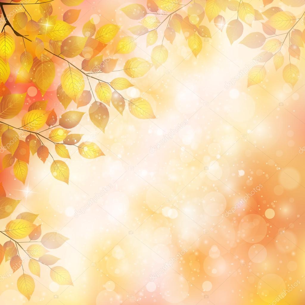 枫树叶景观 — 图库矢量图像08 jboy24 #46567799