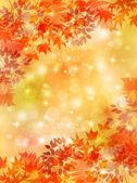Feuilles d'érable automne — Vecteur