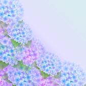 Fondo flor hortensia — Vector de stock