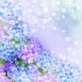 Fond fleur hortensia — Vecteur