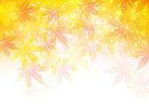 Folhas de outono de Maple fundo — Vetor de Stock